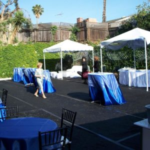 Astroturf rental